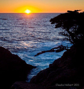 Sunset at Point Lobos State Reserve