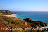 Colorful Big Sur Coastline with flowering shrubs