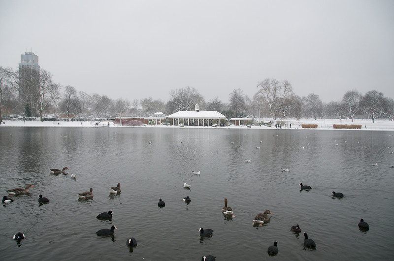 Lake in Hyde Park