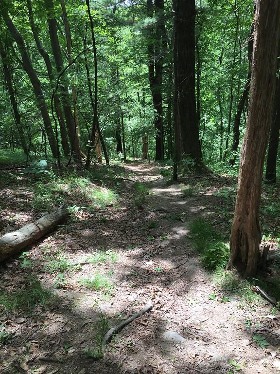Powwow Hill descent