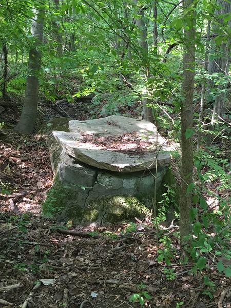Ashland Town Forest, Cowassock Woods
