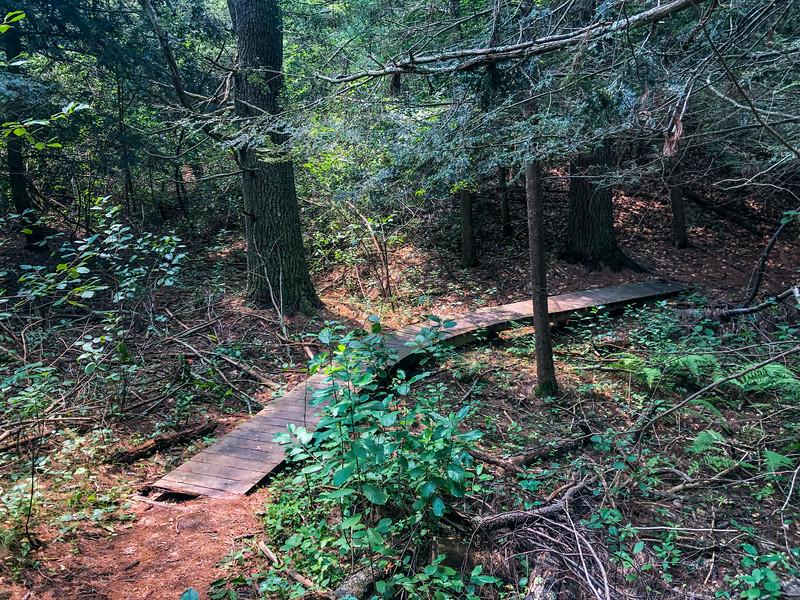 Hidden footbridge within Bradley Palmer