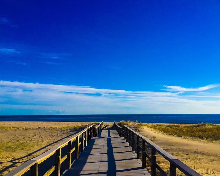 Crane Beach Dune Trails