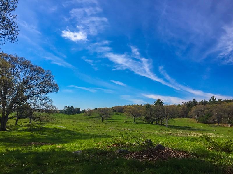 #6<br /> Appleton Farms<br /> 2.63 miles<br /> Spring has sprung!
