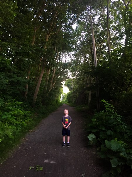 Marblehead Rail Trail
