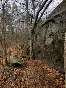 On one of the un-marked trails. This did eventually leqd me to the Red Rocks trail but in a roundabout way. Lots of crevices and voids where a coyote or fox could nest.