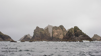 Farallon Islands - Farallon National Wildlife Refuge, CA, USA