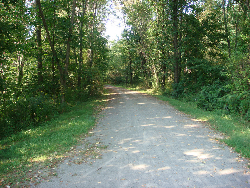 The Great Allegheny Passage Trail heading east and up from Harnedsville toward Fort Hill.