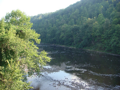 The Casselman River between Harnedsville and Confluence.