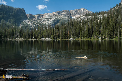 """A Cooling Dip in Baker Lake"""