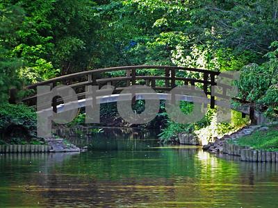 Black Bridge for G Murphy