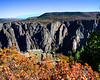 Black Canyon Of The Gunnison National Park (10 of 23)