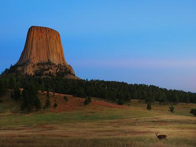 The Black Hills, Badlands, and Devil's Tower