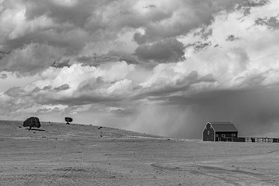 A New Mexico Barn Scene