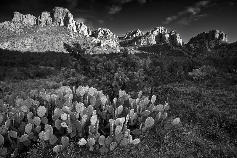 Texas, Big Bend National Park, Texas, Chisos Mountains,  Black and White, Landscape, 德克萨斯, 大弯曲国家公园,风景, 黑白摄影