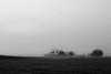 Pensylvania, Kishacoquillas Valley, Spring morning Sunrise, Fog Black White Landscape Art, 宾夕法尼亚 黑白摄影, 风景