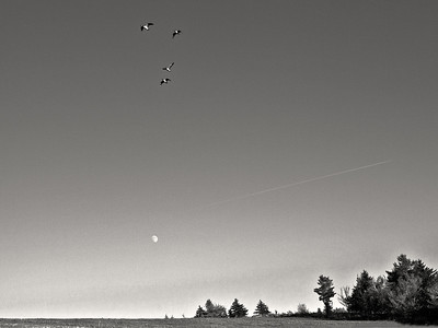 Air Traffic - Stoddard, New Hampshire