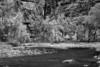Utah, Zion National Park, Black White, Landscape 犹他, 锡安山国家公园 黑白摄影, 风景