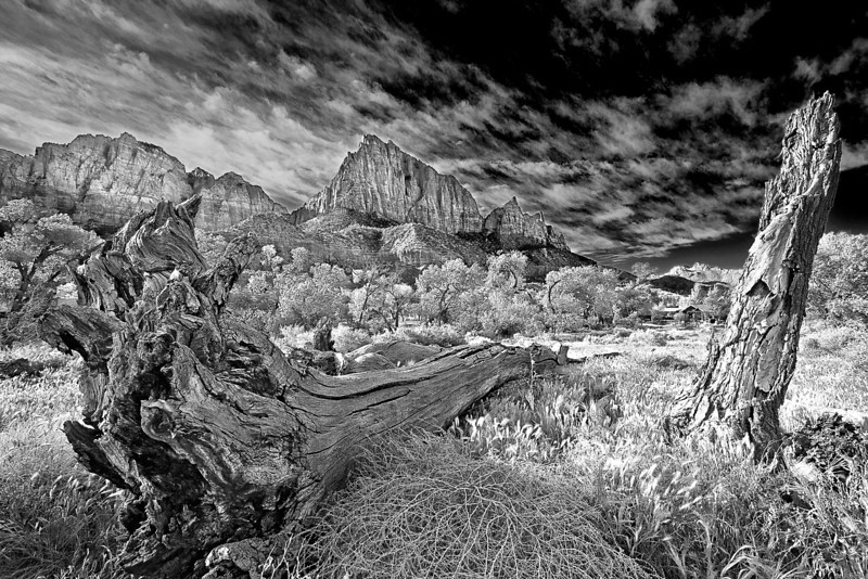 Utah, Zion National Park, Black White, Landscape, Art 犹他, 锡安山国家公园 黑白摄影, 风景