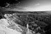 Utah, Bryce Canon National Park, Sunrise, Landscape, 犹他, 布莱斯国家公园 黑白摄影, 风景