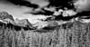 CanadIan Rockies, Banff National Park, Landscape, 加拿大, 班夫国家公园 黑白摄影, 风景