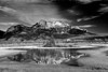 Canaian Rockies, Jasper National Park,  Landscape, Black & White, 加拿大 贾斯珀国家公园 黑白摄影, 风景