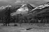 Canadian Rockies, Jasper National Park, Landscape, 加拿大 贾斯珀国家公园 黑白摄影, 风景
