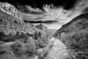 Utah, Zion National Park, Virgin River Black White Landscape Art 犹他, 锡安山国家公园 黑白摄影, 风景