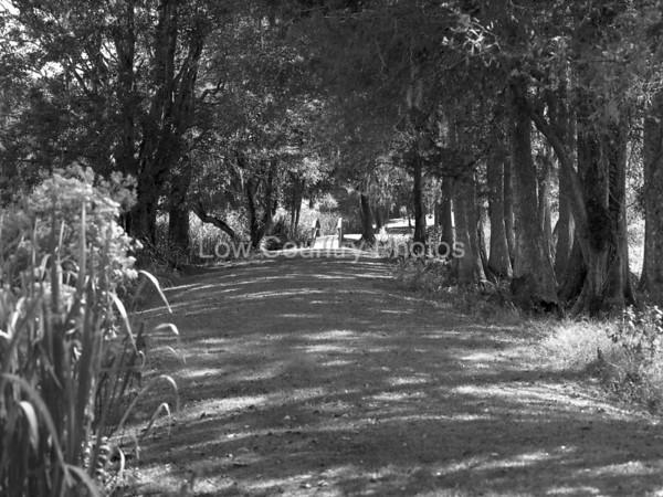 Walk in the Garden M 003-1