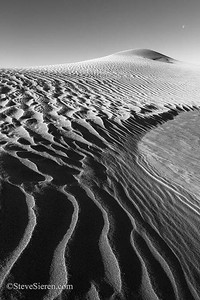 Where are these dunes? IV A large dune field exists out in a wilderness section of the Mojave Desert.