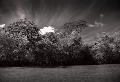Croc River