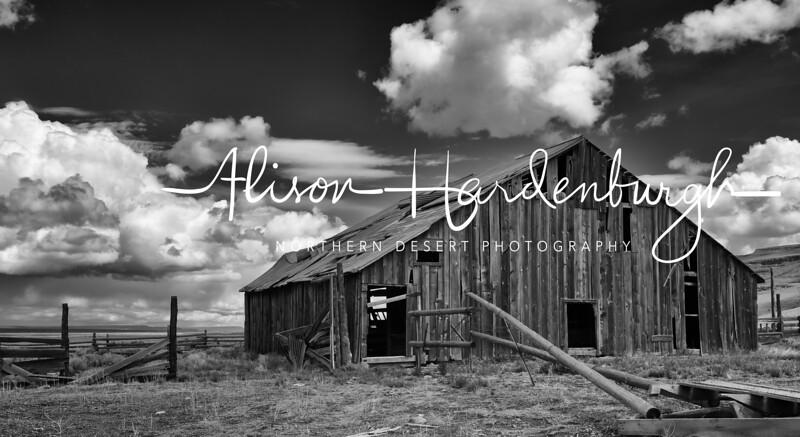 Abandoned Barn, IXL Ranch - Nevada
