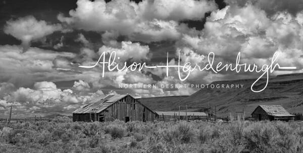Abandoned IXL Ranch