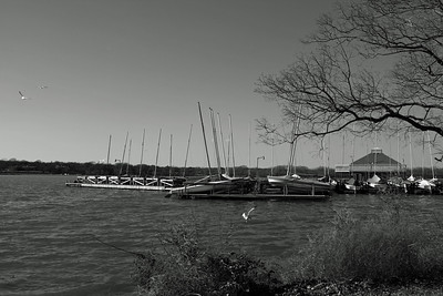 Docks at White Rock Lake, Dallas, Texas