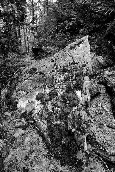 Mossy Rock, Bruce Trail