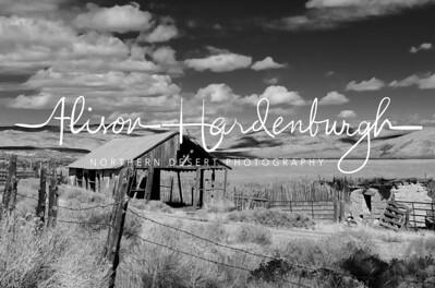 Walters Ranch, Highway 305 Nevada