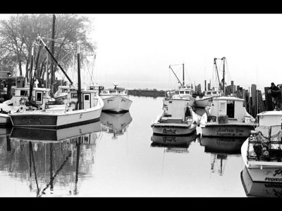 """Deadrise Fleet at the Point""  Workboats at Messick Point in Poquoson, VA.  May 2001"