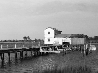 """Bill's Fish Dock""  The old Bill Forrest Seafood dock in Poquoson, VA.  This photo was taken in the Spring of 2001, the dock was torn down in October 2001."