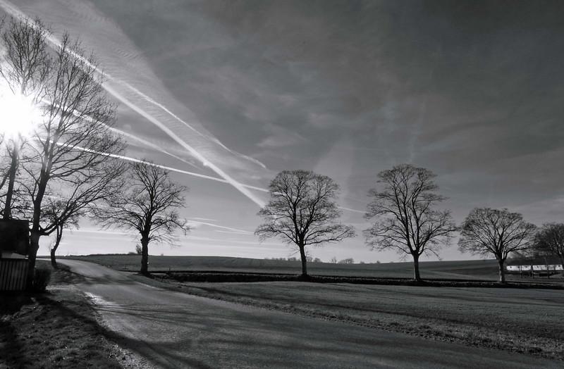 """Prime Sun""<br /> Avenue, Bonderup, Denmark"