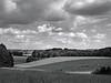 Cow Valley. <br /> Set fra Troldebjerg, Ladby Overdrev ved Næstved. Denmark.