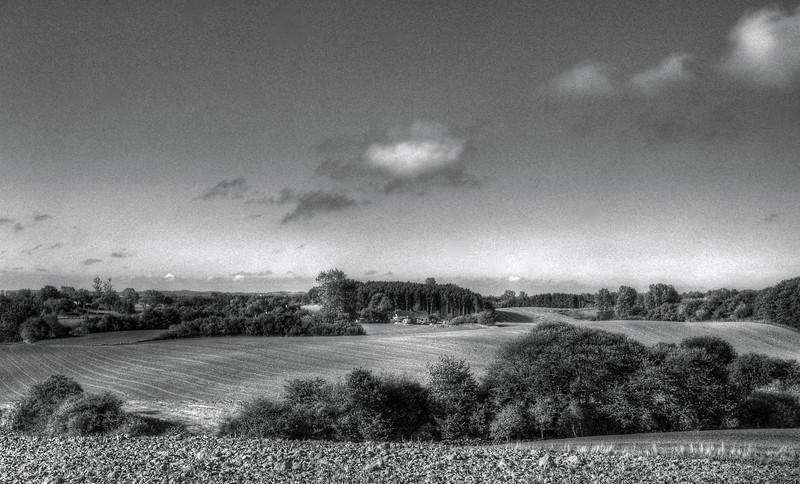 Morning Field.<br /> Langebjerg set fra Stavnstrupvej, Denmark.