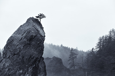 Rialto Beach - La Push, Washington