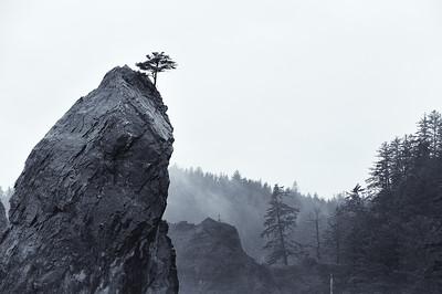 Rialto Beach - La Push, Washington