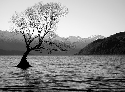 Lake Wanaka - Otago, New Zealand