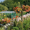 An allotment in Blanchland
