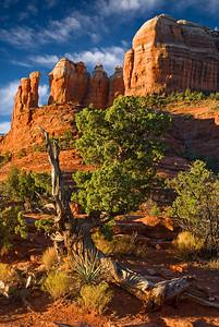 Early light on Cathedral Rock, Sedona, Arizona