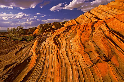 Wavy patterns in the sandstone on the rim of Waterholes Canyon, Navajo Nation, near Page, Arizona