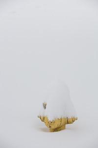 Blizzard08_-57