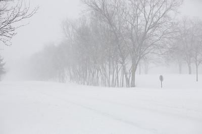 Blizzard08_-55