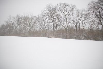 Blizzard08_-39